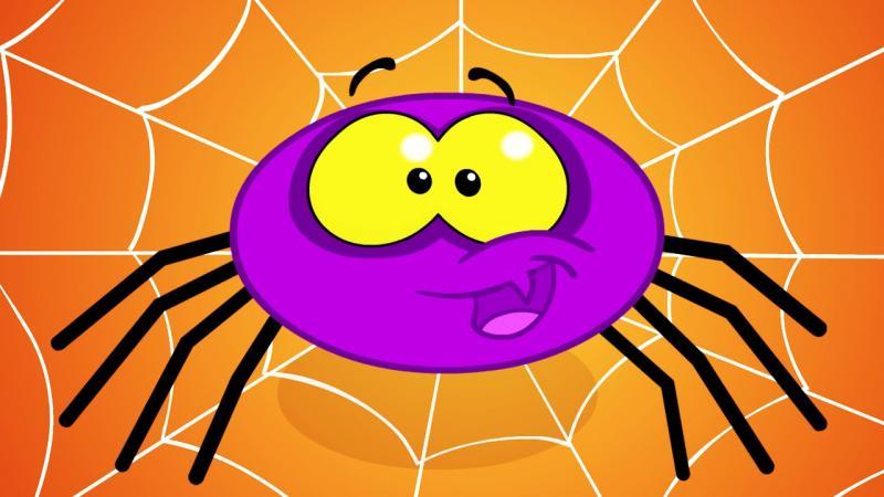 Itsy Bitsy Spider Image